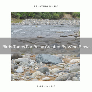 Birds Tunes For Relax Created By Wind Blows