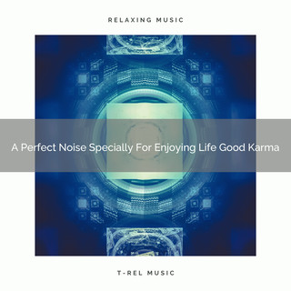 A Perfect Noise Specially For Enjoying Life Good Karma