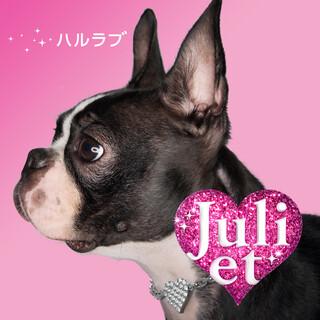 Haru Love