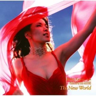 新世界 (The New World)
