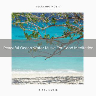 Peaceful Ocean Water Music For Good Meditation