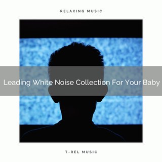 Leading White Noise Collection For Your Baby