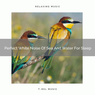 Perfect White Noise Of Sea And Water For Sleep