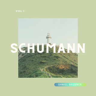 Schumann:Famous Works For Piano, Vol.1