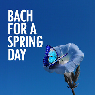Bach For A Spring Day