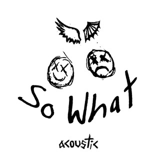 So What ! (Acoustic)
