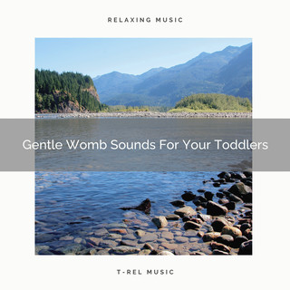 Gentle Womb Sounds For Your Toddlers