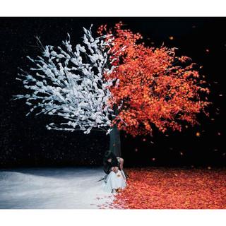 茜さす / Everlasting Snow (Akane Sasu Everlasting Snow)