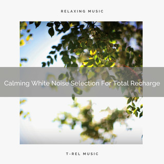 Calming White Noise Selection For Total Recharge