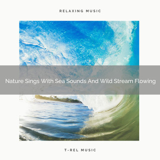 Nature Sings With Sea Sounds And Wild Stream Flowing