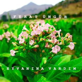 Eyvanina Vardim