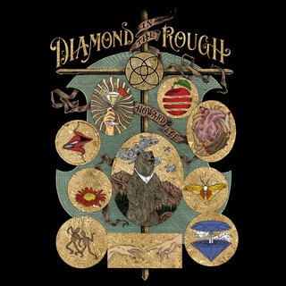 Diamond In The Rough (Acoustic version)
