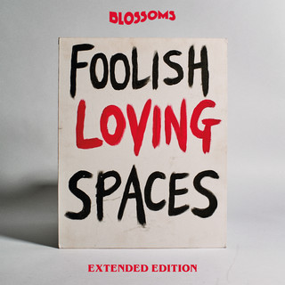 Foolish Loving Spaces (Extended Edition)