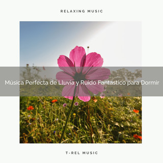 Música Perfecta De Lluvia Y Ruido Fantastico Para Dormir