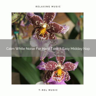 Calm White Noise For Hard Take It Easy Midday Nap