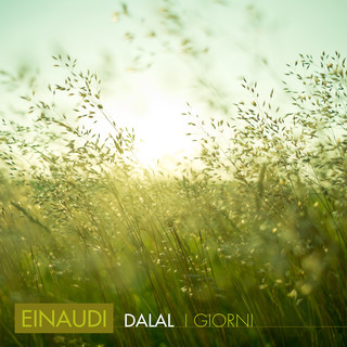 Einaudi. Fly