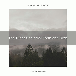 The Tunes Of Mother Earth And Birds