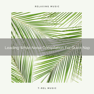 Leading White Noise Compilation For Quick Nap