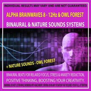 Alpha Brainwaves 8 - 12Hz & Owl Forest