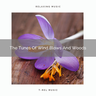 The Tunes Of Wind Blows And Woods