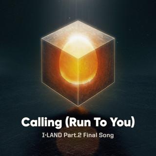 Calling (Run To You)