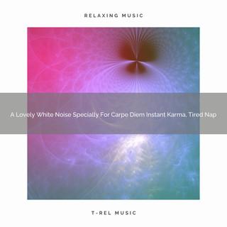 A Lovely White Noise Specially For Carpe Diem Instant Karma, Tired Nap