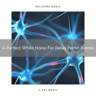 A Perfect White Noise For Relax Perfet Karma