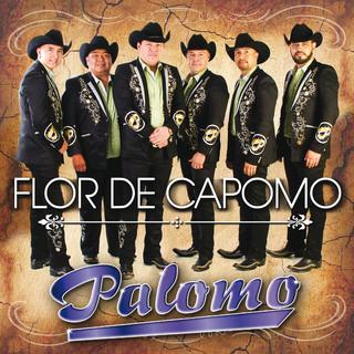 Flor De Capomo