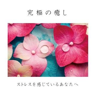 究極の癒し~ストレスを感じているあなたへ~ (Kyukyo No Iyashi Stress Wo Kanjiteiru Anata E)