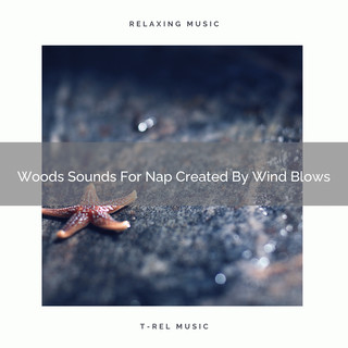 Woods Sounds For Nap Created By Wind Blows