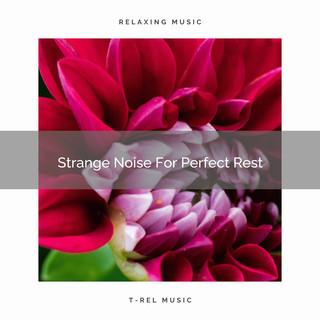 Strange Noise For Perfect Rest