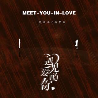 遇見愛的你