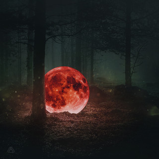 Red Moon:The Piano Forest
