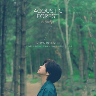 The Acoustic Forest (음악 캠핑 갈래?)