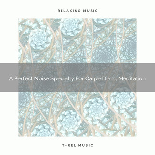 A Perfect Noise Specially For Carpe Diem, Meditation