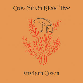 Crow Sit On Blood Tree