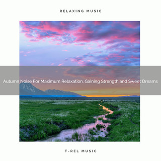 Autumn Noise For Maximum Relaxation, Gaining Strength And Sweet Dreams