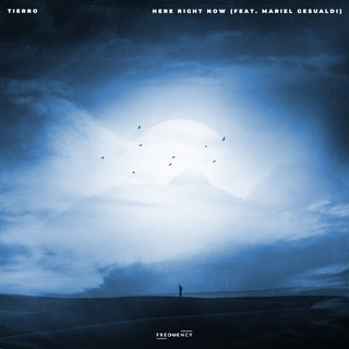 Tierro - Here Right Now (Feat. Mariel Gesualdi)