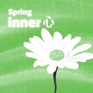 手碟演奏曲:四季之春