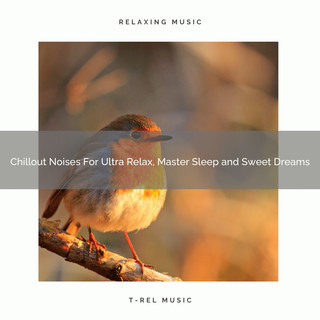 Chillout Noises For Ultra Relax, Master Sleep And Sweet Dreams