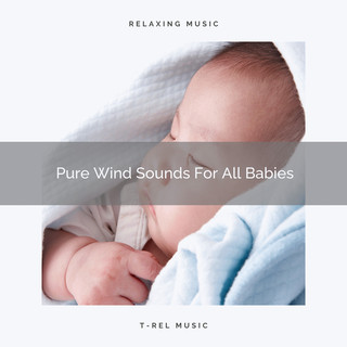 Pure Wind Sounds For All Babies
