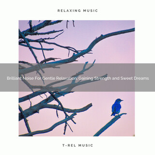 Brilliant Noise For Gentle Relaxation, Gaining Strength And Sweet Dreams