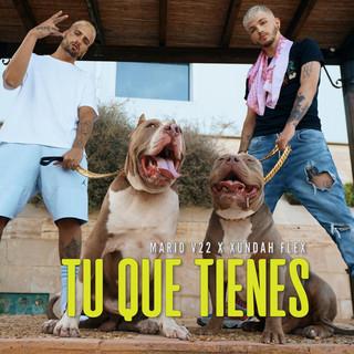 TU QUE TIENES (Feat. MARIO V22)