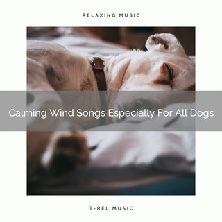 Calming Wind Songs Especially For All Dogs