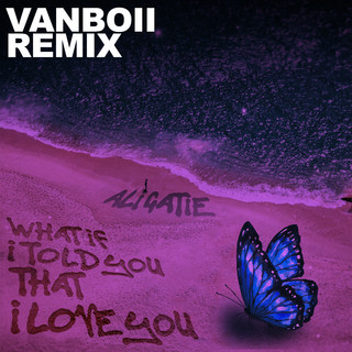 What If I Told You That I Love You (Vanboii Remix)