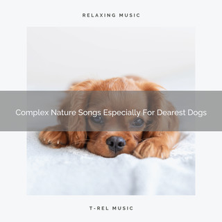 Complex Nature Songs Especially For Dearest Dogs