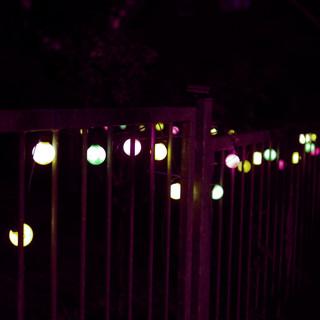 Afternoon Lights