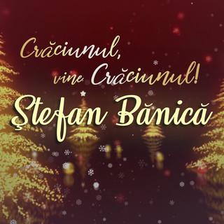 Crăciunul, Vine Crăciunul !