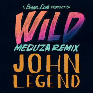 Wild (Meduza Remix)