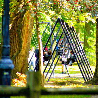 Playground In A Park With Birdsongs